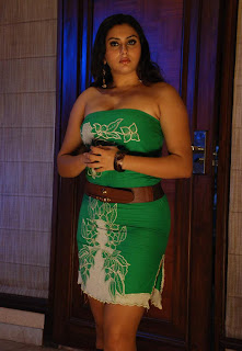 HOT SOUTH ACTRESS NAMITHA SEXY IMAGES