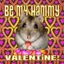 Hamster love......