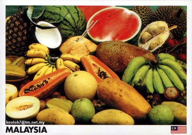 Y7089+-+Malaysian+Fruits.jpg