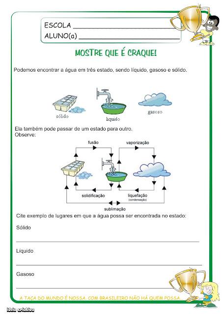 Atividades OS Estados Físicos da Água E O ciclo da Água