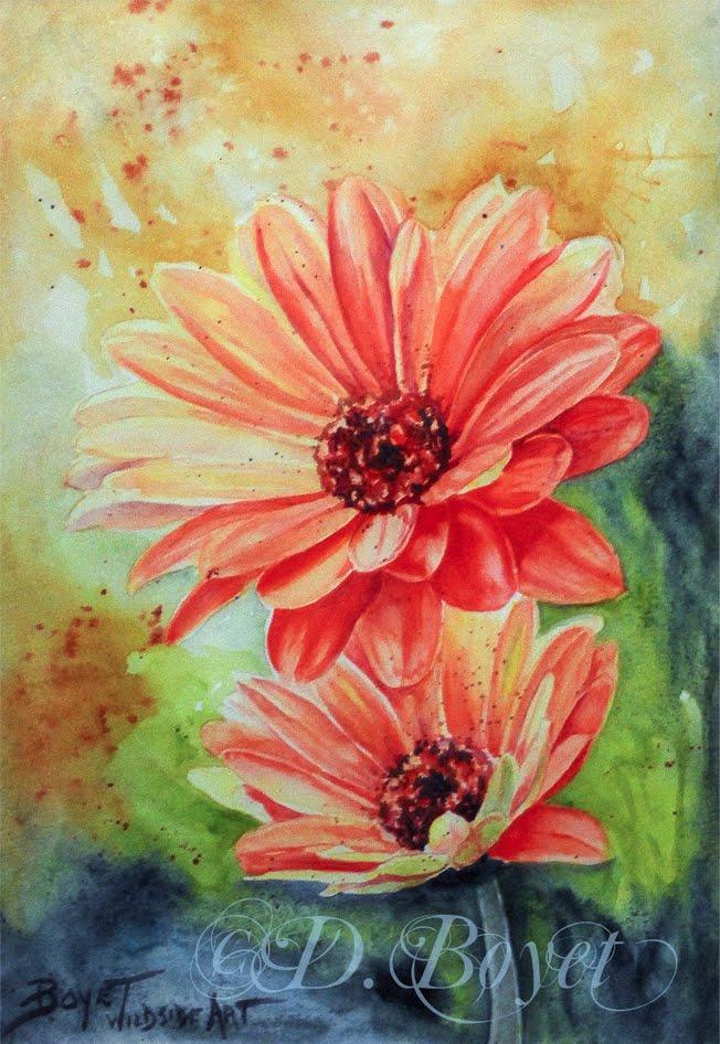 Wildside Art For Really Wild Art Gerber Daisy Watercolor Painting By Deborah Boyet Artist