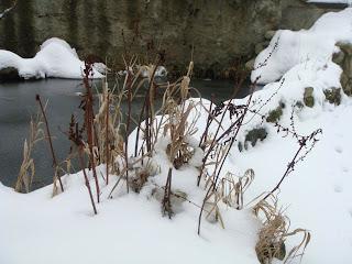 neige bassin