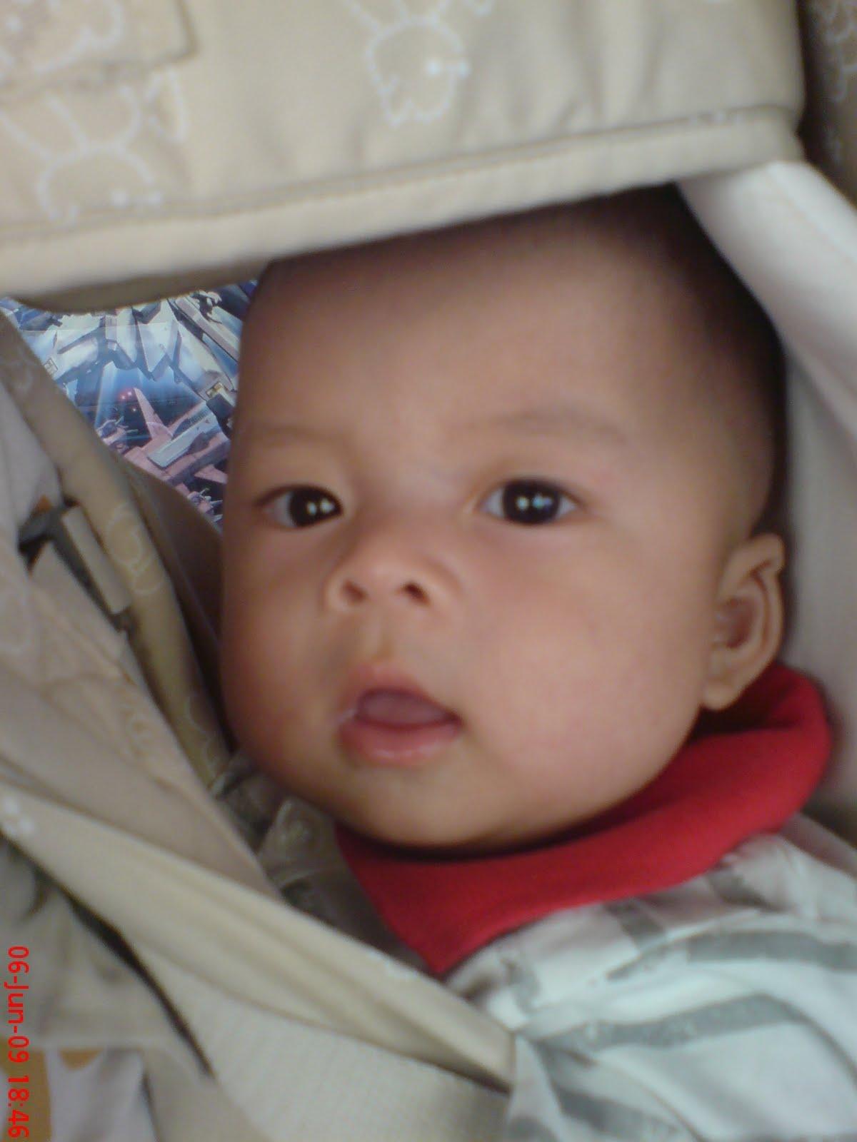 Anas - 5 months (5.9 kg)