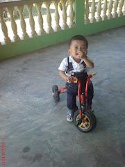 Anas - 1 Tahun 8 bulan