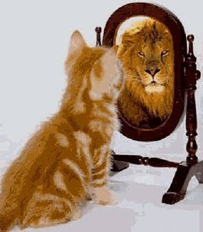 http://3.bp.blogspot.com/_C4kORIBiLnY/SvITUiIoTwI/AAAAAAAADn4/WUQbOZsLVpI/s400/narcisismo.jpg