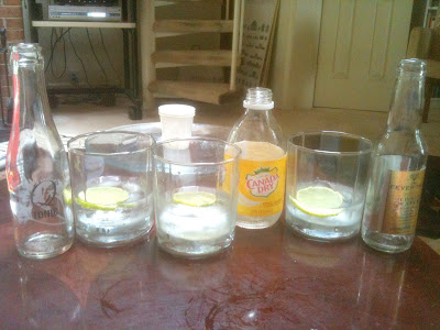 Tonic Water Taste Test