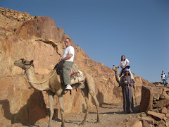 Mom on Sinai