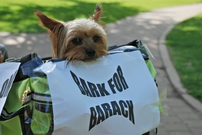 Bark for Barack