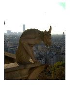 Familiar Gargoyle of Notre Dame