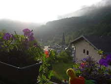 The view from our charming chalet in the Alpes and Autumn's caterpillar