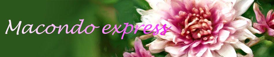 Macondo express