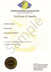 Arowana Certificate Of Identity