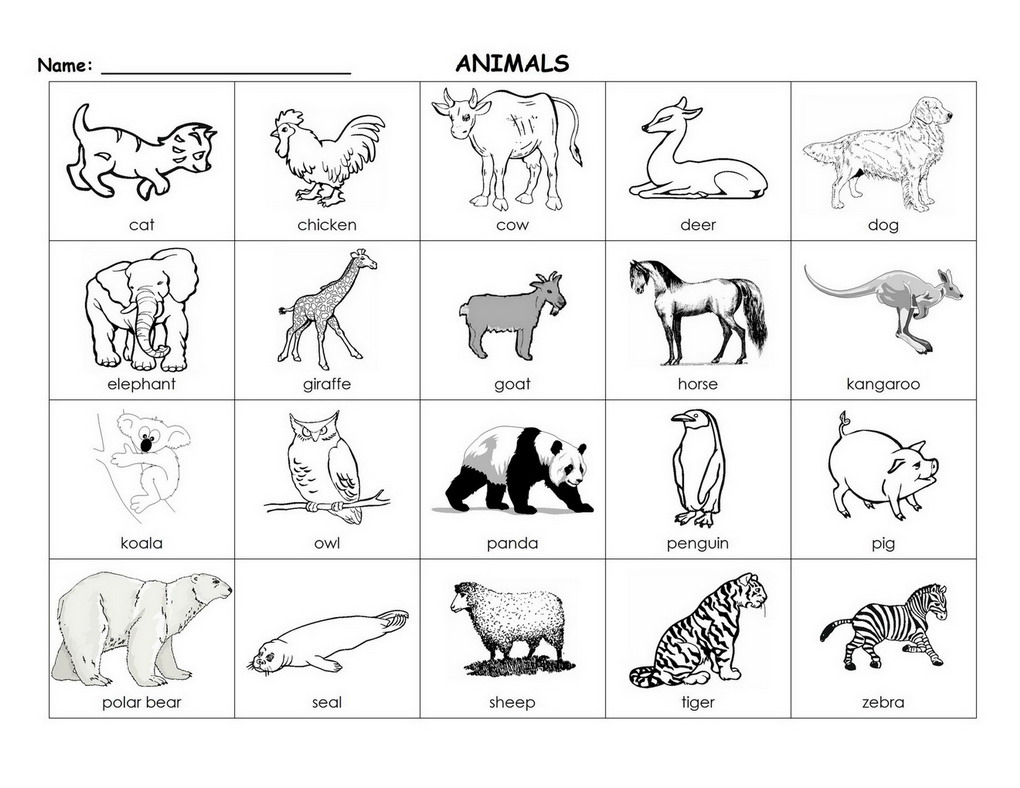 Free Coloring Pages Of Asl Animals