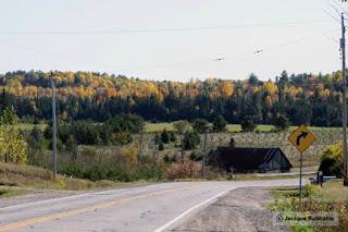 photo paysage d'automne route Vallée gatineau outaouais