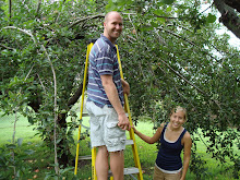 Picking Apples, August 2008
