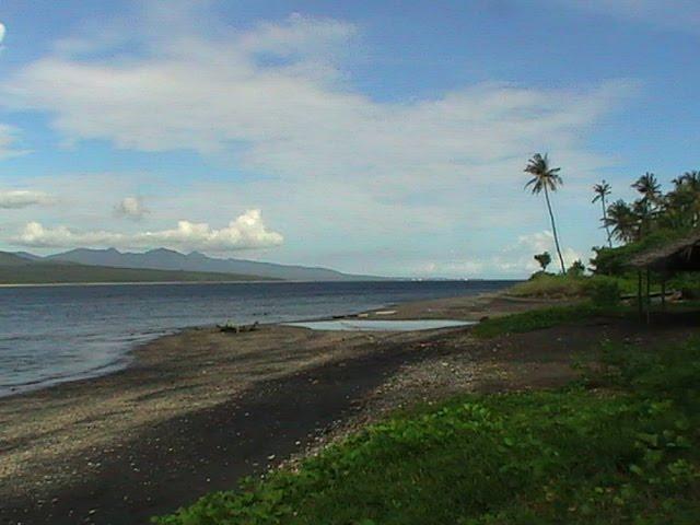 pantai wongsorejo
