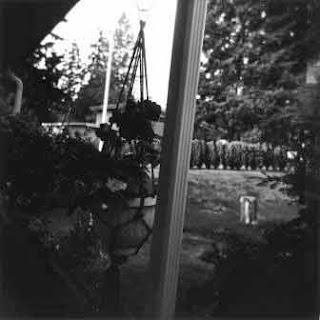 Hanging flowerpot, through a window