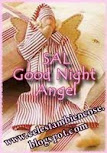 SAL-Good Night  Angel