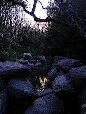 Un arroyo