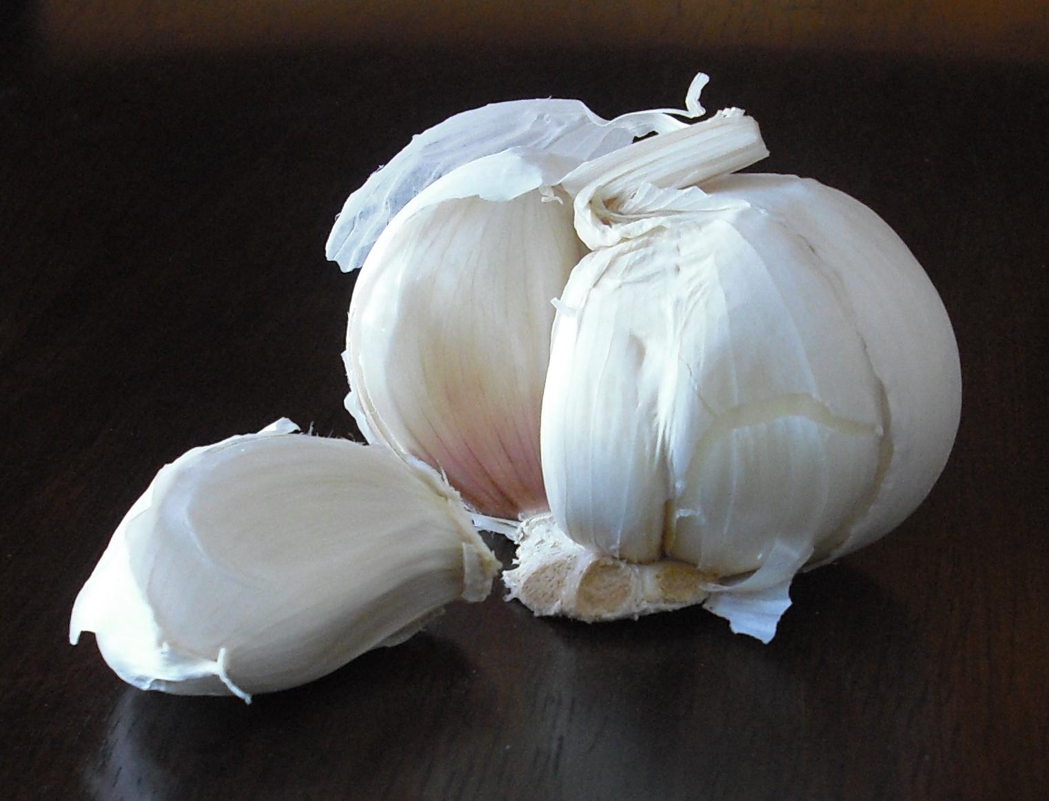 sekilas tentang bawang putih bawang putih allium sativum adalah ...