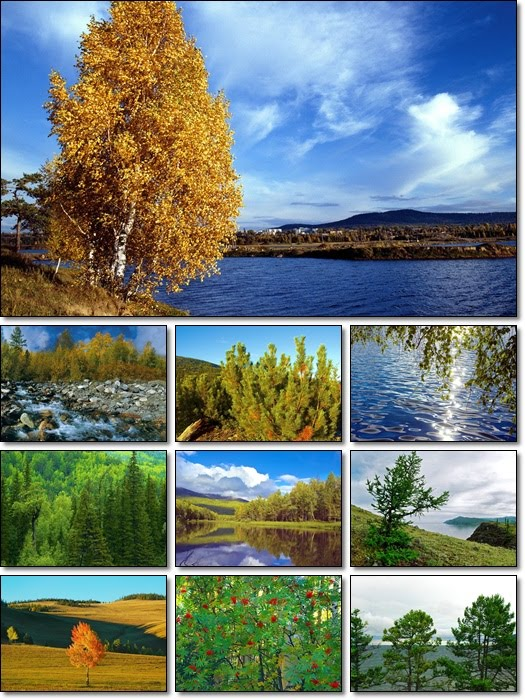 Autumn in Siberia Desktop Wallpapers Pack