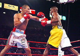 mayweather vs castillo