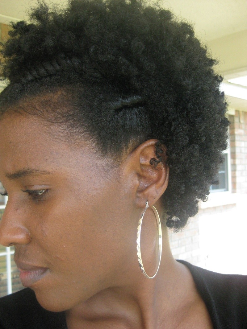 Flat Twist Curly Fro Natural Hair Style  CurlyNikki