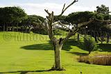 Vale do Lobo Royal Course