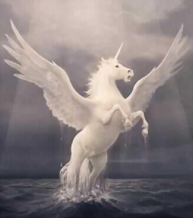 The Yin-Yang Pair: Air Royalty ((DONE)) Pegasus_Rising