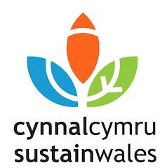 visit Cynnal Cymru's website