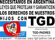 AYUDA A NIÑOS CON AUTISMO EN ARGENTINA