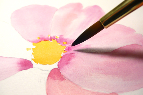 Paint Draw Learn To Water Color Basics A Cosmos Flower