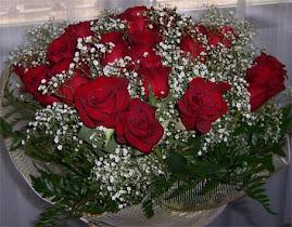 Rosas en diciembre