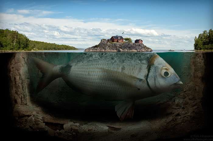 Zona Mancing Beberapa Ikan Terbesar Di Dunia