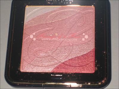 Est%C3%A9e+Lauder+Signature+Shimmer+Powder+5