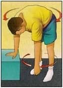 Codman Pendulum Exercises