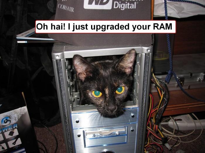 http://3.bp.blogspot.com/_COIs8C9pazw/TDG_WhTxtMI/AAAAAAAABiU/bdCbaARX3Z8/s1600/RAM+Upgrade-700x525.jpg