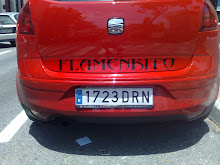 seat Altea Flamenquito