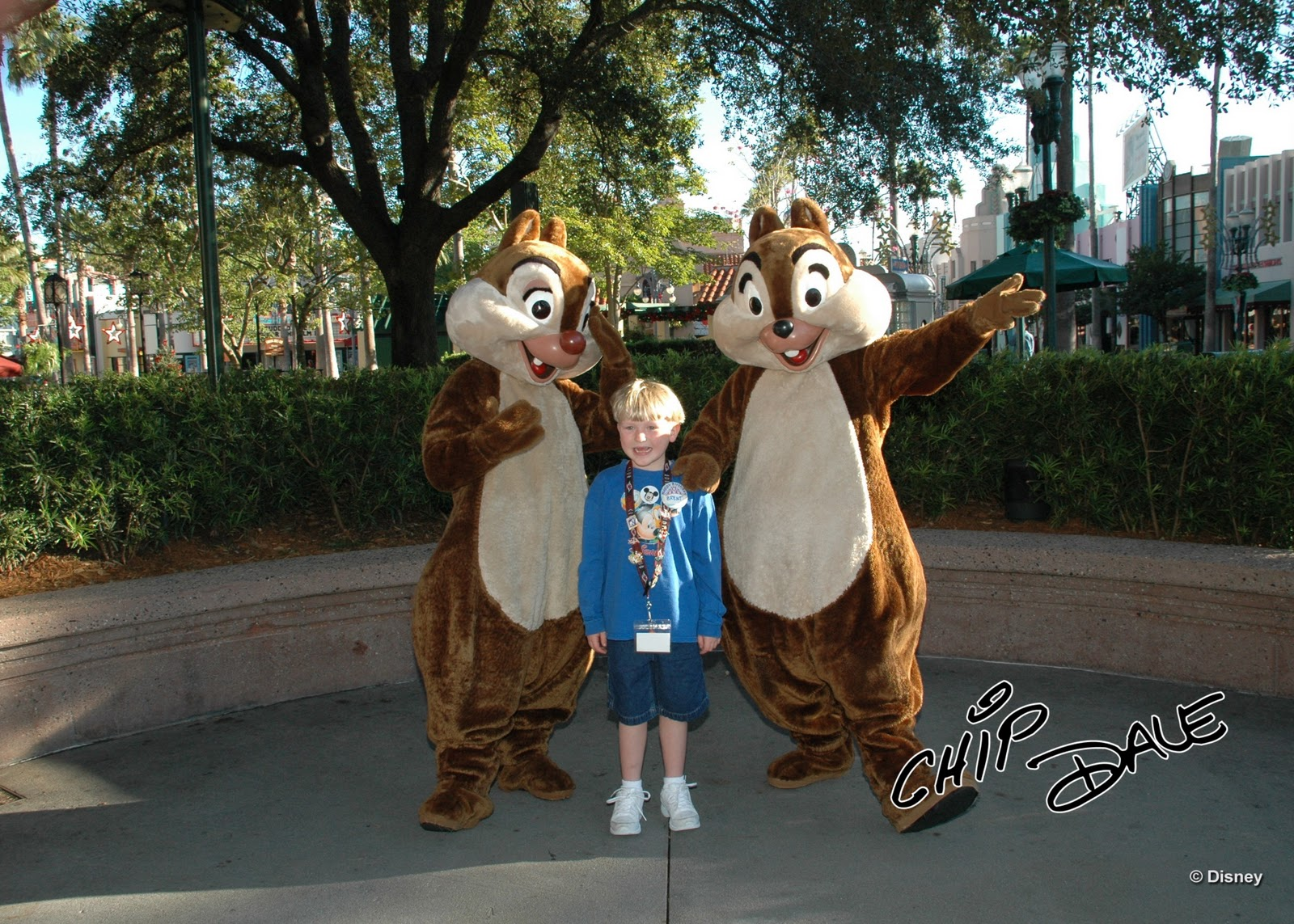 Williams Family So You Want To Meet Chip And Dale