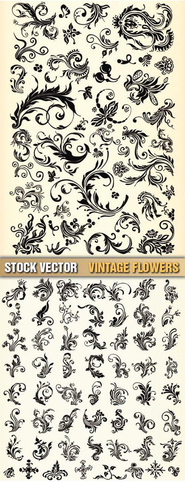 Stock Flower Vector