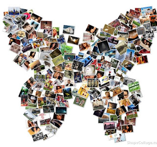 patchwork papillon de photo