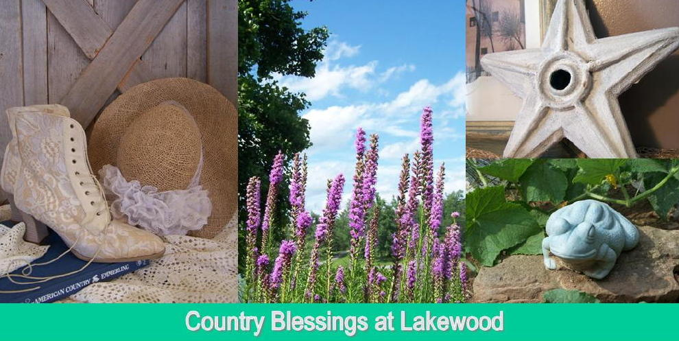 """CountryBlessings@Lakewood"""