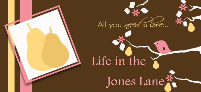 Life in the Jones Lane