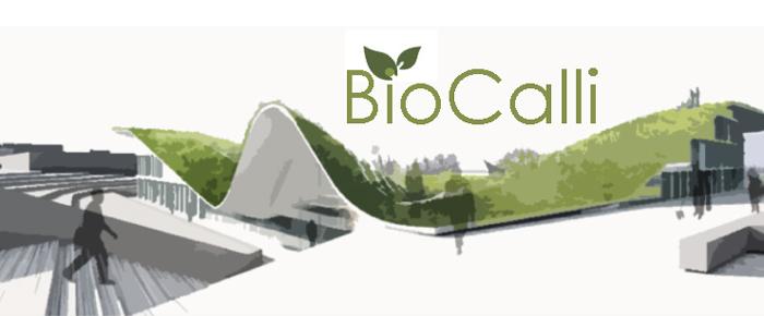 BioCalli