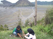 BROMO MT , INDONESIA
