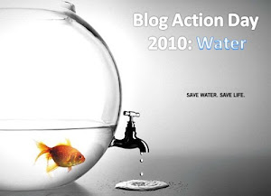 TICDEPLATA Blog action day water