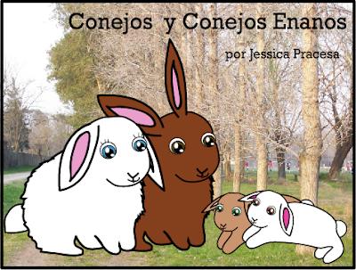 Conejos y Conejos Enanos