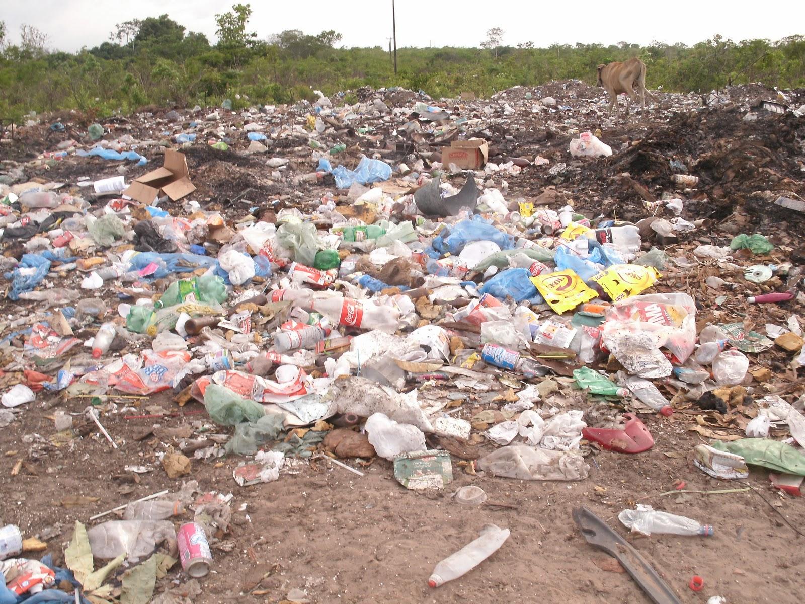 Resultado de imagem para Poluição do solo