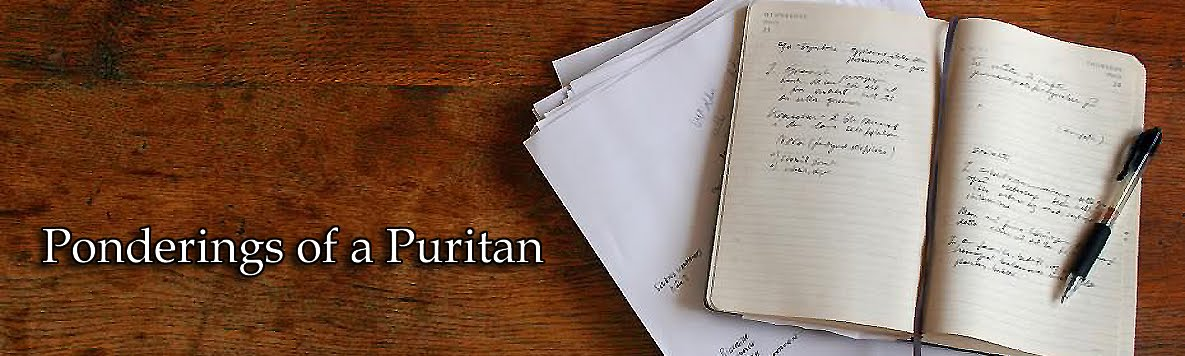 good thesis and puritan