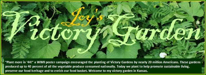 Joy&#39;s Victory Garden